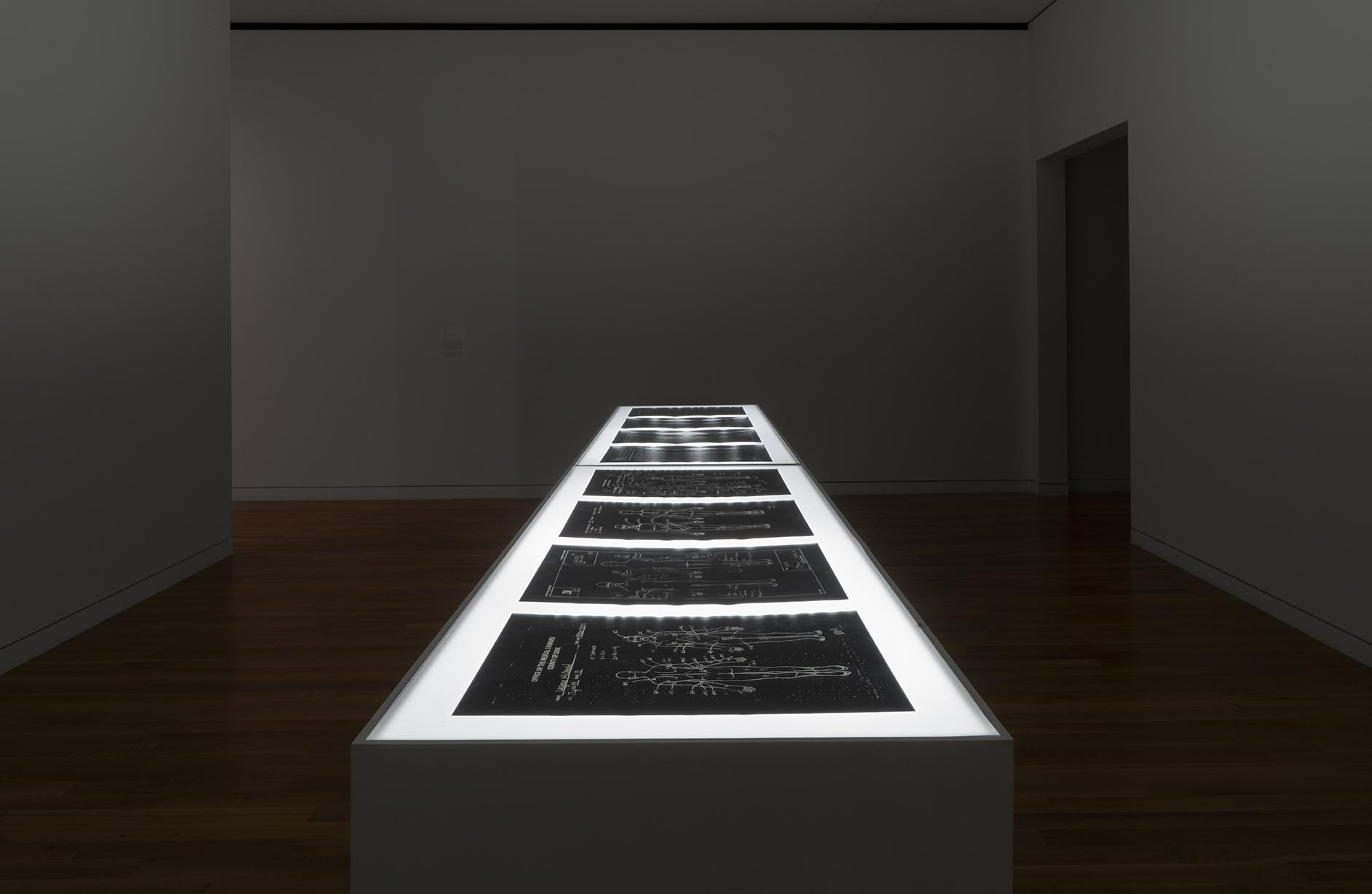 museum-wideshot